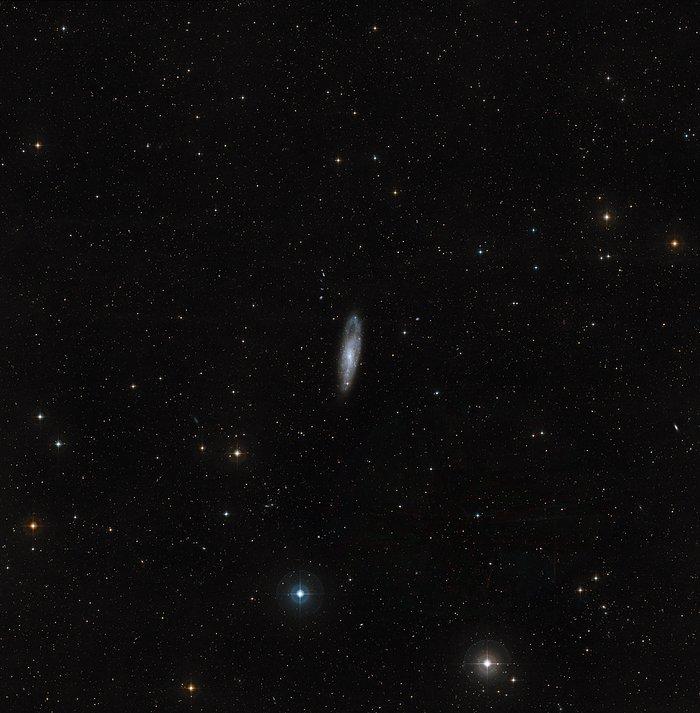 Visión de campo amplio del cielo que rodea a NGC 247