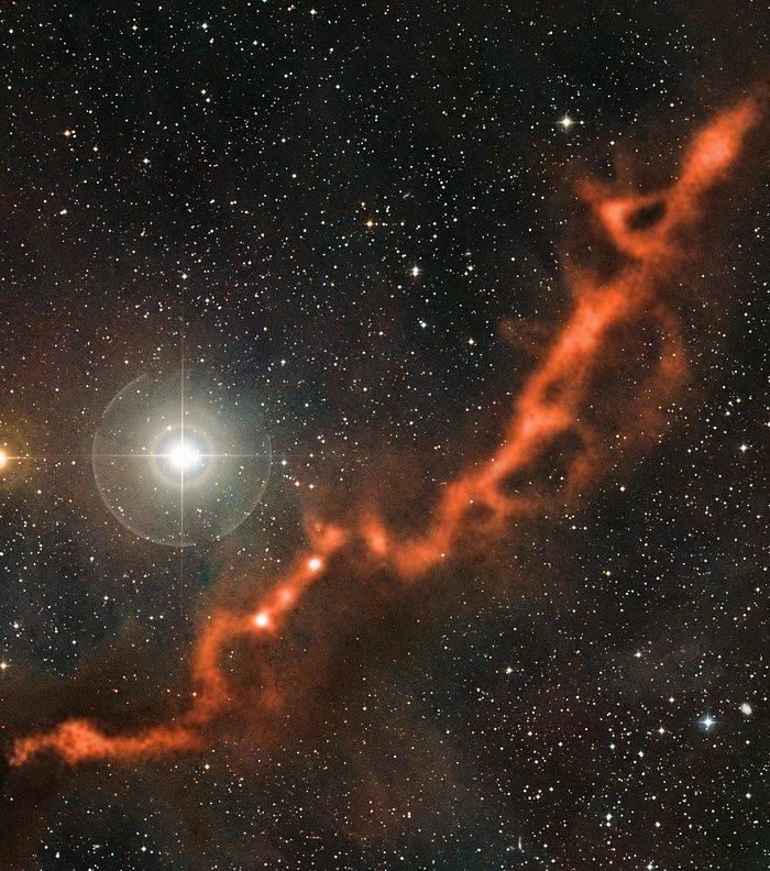 APEX-bild av ett stjärnbildande filament i Oxen