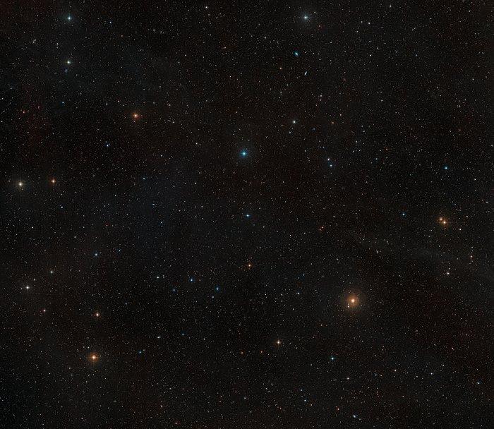 Weitwinkelaufnahme der Umgebung des nahen Sterns AU Microscopii