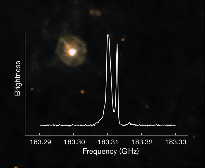 Observations of the star W Hydrae using SEPIA
