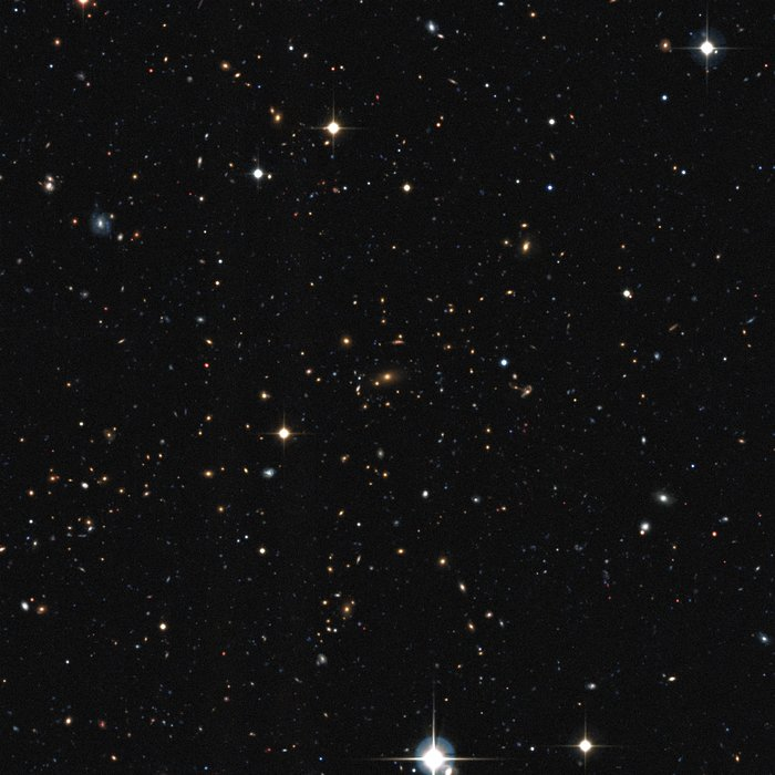Visible light view of a distant galaxy cluster discovered in the XXL survey