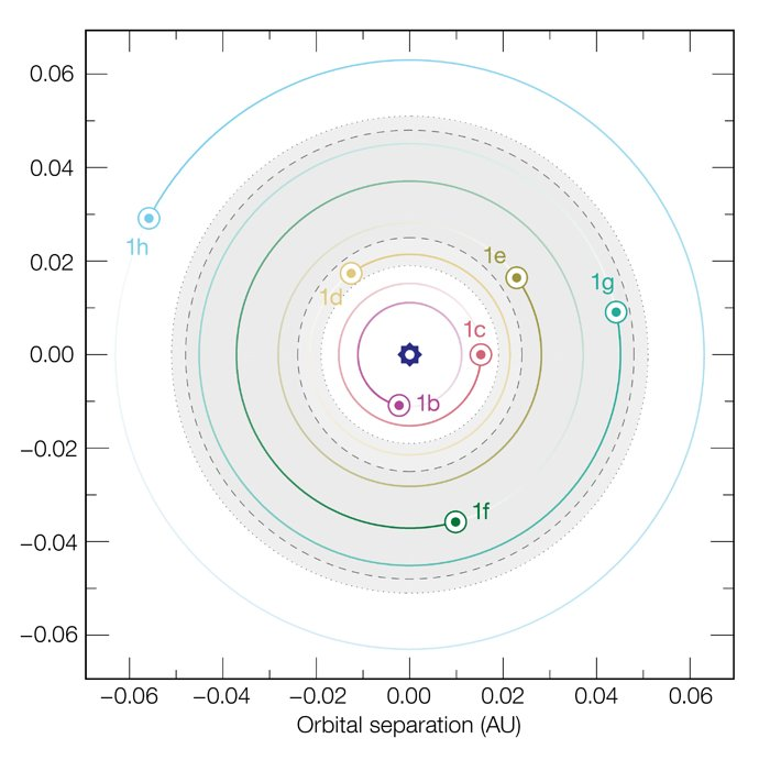 The orbits of the seven planets around TRAPPIST-1