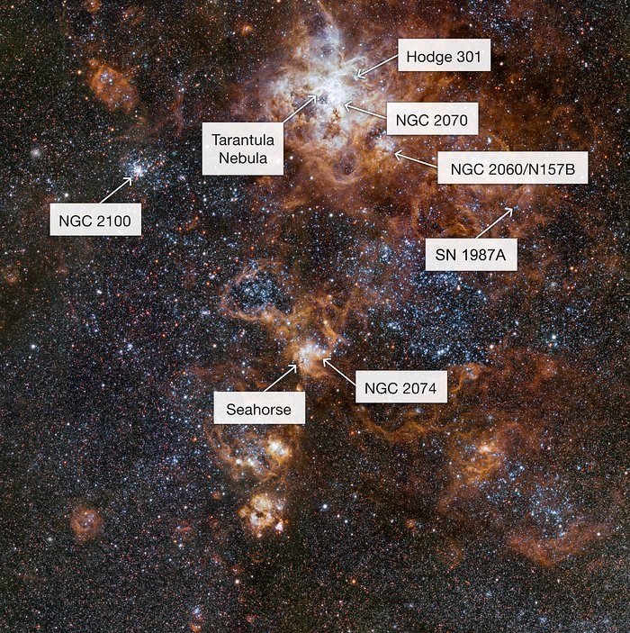 The rich region around the Tarantula Nebula in the Large Magellanic Cloud (annotated)