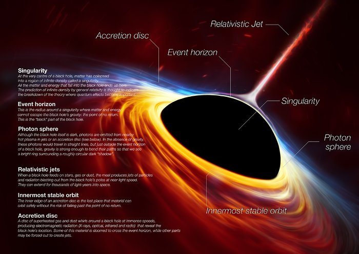 Anatomy of a Black Hole