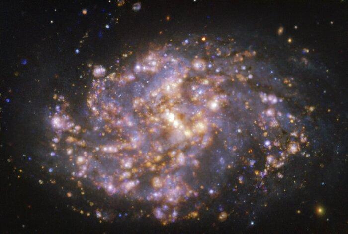 NGC 1087 op verschillende golflengten, zoals waargenomen met het MUSE-instrument van ESO's VLT