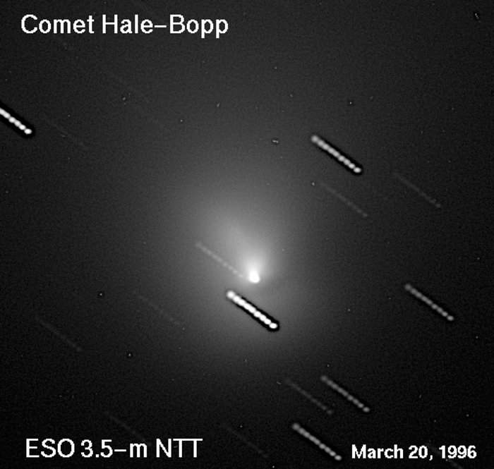 The Near-Nucleus Region of Comet Hale-Bopp