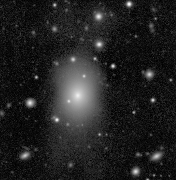 CD Galaxy in the Abell 496 Field