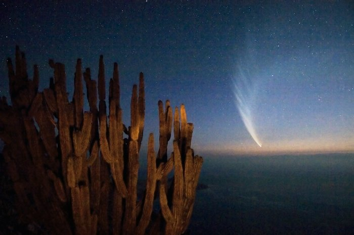 Comet McNaught over the Atacama Desert