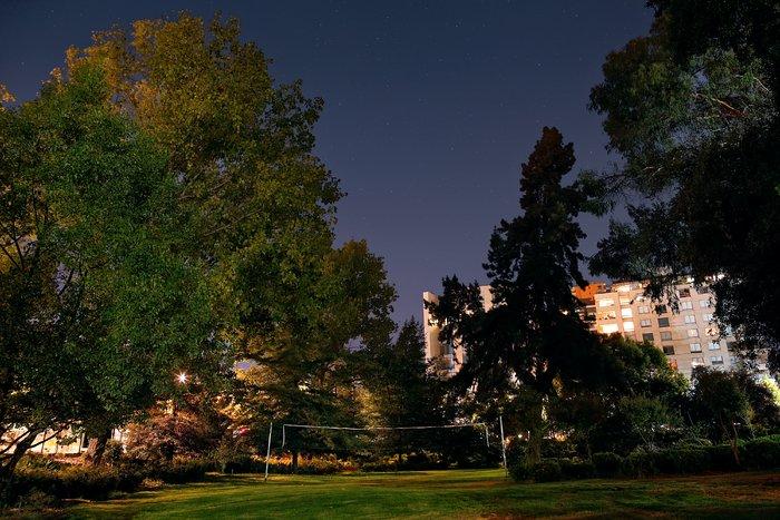 ESO Vitacura garden at night