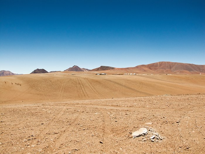 9 Antennas and 6 Vicuñas at ALMA AOS