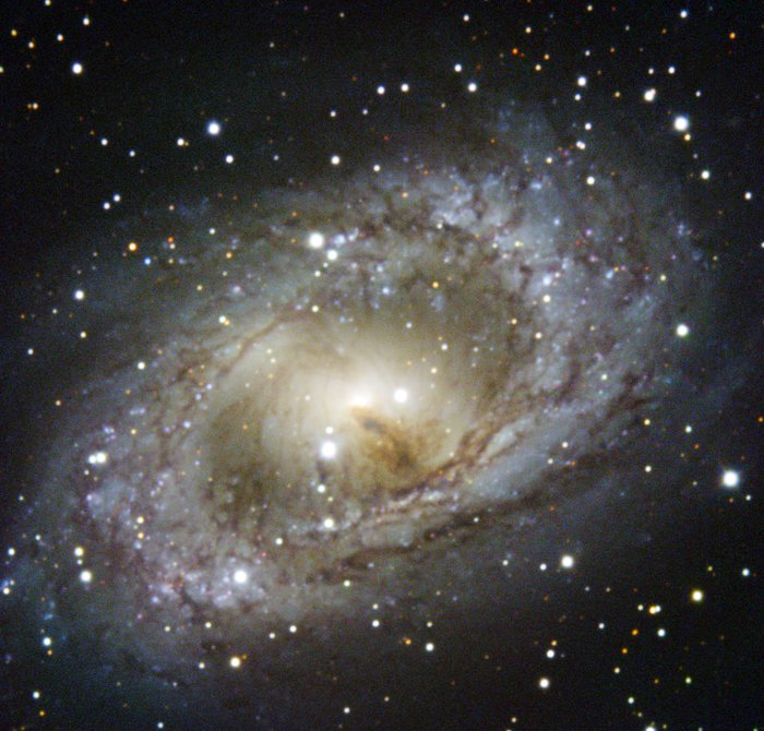 ESO's New Technology Telescope Revisits NGC 6300