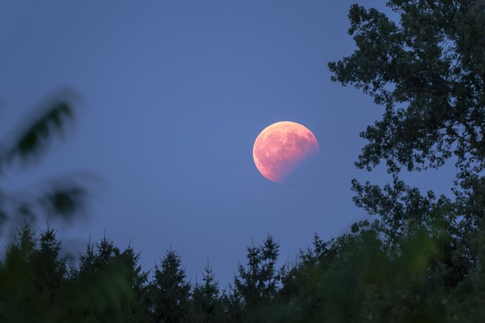 Lunar eclipse seen from Garching