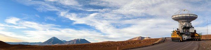 Leviathan der Atacama