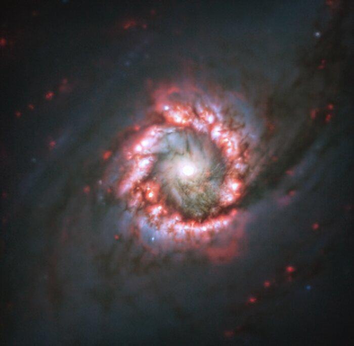 Roosvormige sterformatie rond verafgelegen superzwaar zwart gat