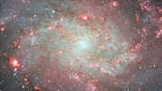 Zooming in on the Triangulum Galaxy