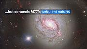 ESOcast 115 Light: Lernen Sie eines der energiereichsten Objekte im Universum kennen
