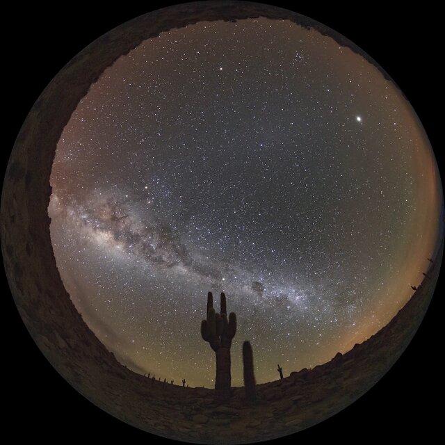 Cactus at ALMA
