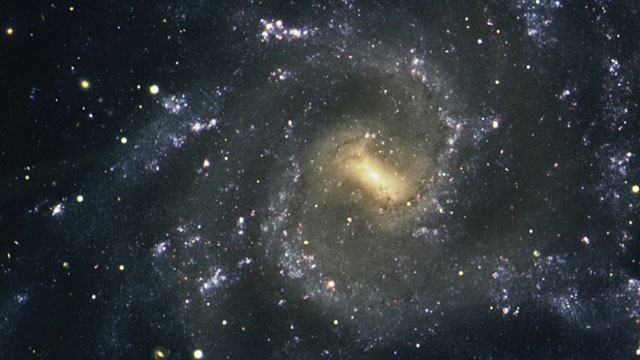 The Seyfert 1 galaxy NGC 7424