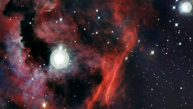 Panoramica della testa della Nebulosa Gabbiano