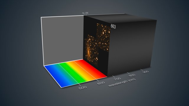 MUSE shows ESO 137-001 in three dimensions