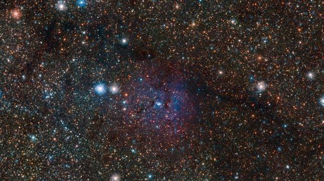 Zoom sulla Nebulosa Trifida e sulle due variabili Cefeidi ben più lontane