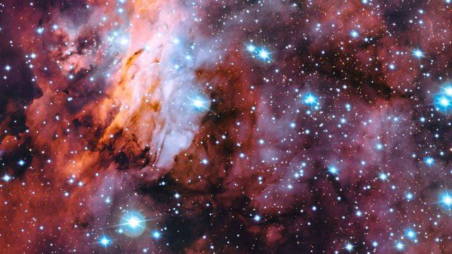 A close-up look at the Prawn Nebula