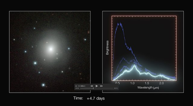 Time-lapse sequence of kilonova images and spectra