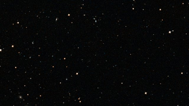 Zooming into the MUSE view of the Hubble Ultra Deep Field