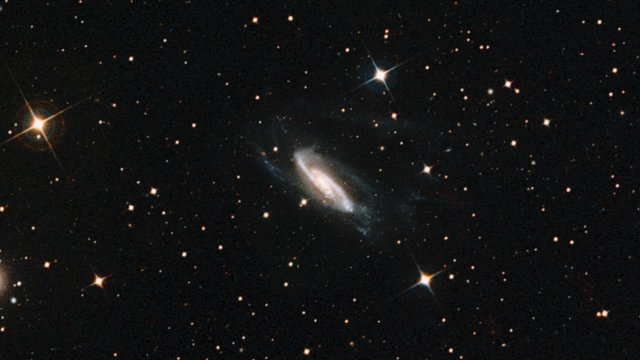 Zooming into NGC 3981